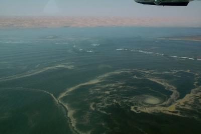 Aerial View of Namibia's Skeleton Coast-Anne Keiser-Photographic Print