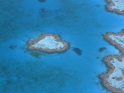 Aerial View of the Heart Reef, Hardy Reef, Great Barrier Reef, Queensland, Australia-Jurgen Freund-Photographic Print
