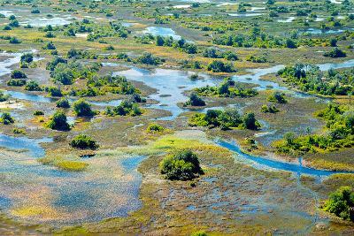 Aerial View of the Spring Floods of the Okavango Delta, Botswana,Africa-Dennis Sabo-Photographic Print