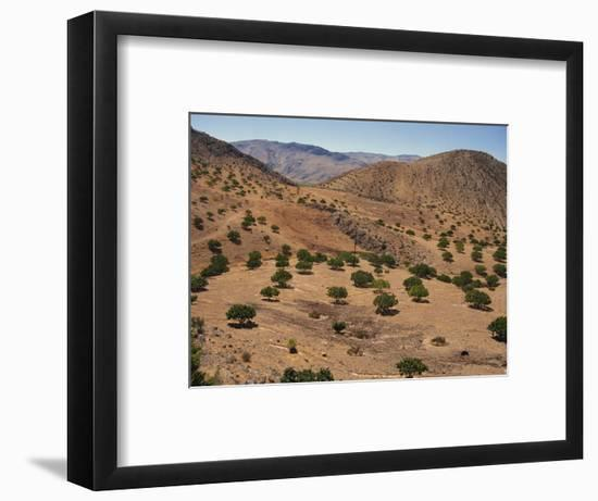 Aerial View over Fars Province Landscape, with Olive Trees, Iran, Middle East-Poole David-Framed Photographic Print