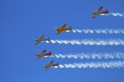 Aerobatic Display by North American Harvards, or T-6 Texans, or SNJ, Airshow-David Wall-Photographic Print