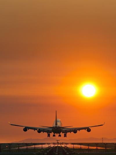 Aeroplane Landing At Sunset-David Nunuk-Photographic Print