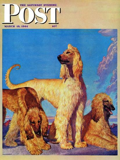 """Afghan Hounds,"" Saturday Evening Post Cover, March 18, 1944-Rutherford Boyd-Giclee Print"