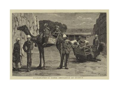Afghanistan, a Camel Ambulance at Kurrum-John Charles Dollman-Giclee Print