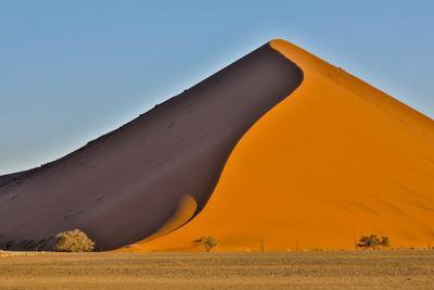 https://imgc.artprintimages.com/img/print/africa-namibia-sossusvlei-dune-in-the-afternoon-light_u-l-q1del2l0.jpg?p=0