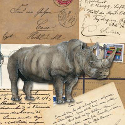Africa Rhinoceros