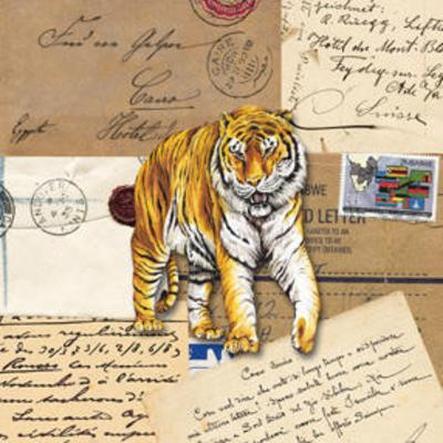 Africa Tigers--Art Print