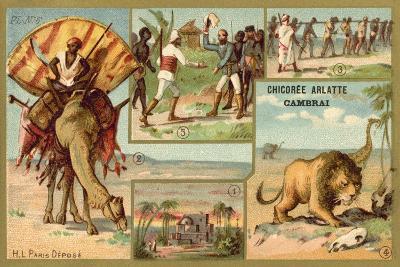 Africa--Giclee Print