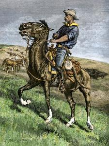 African-American Buffalo Soldier Riding a Frisky Horse Fresh from the Herd, 1880s