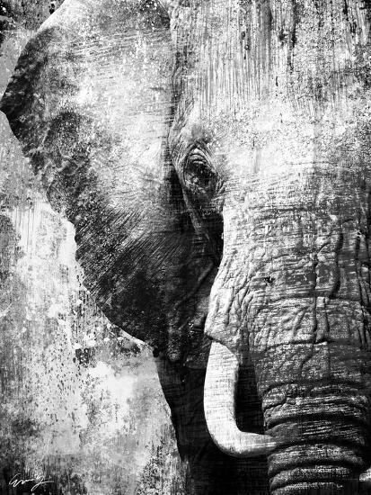 african animals i grey art print by eric yang art com