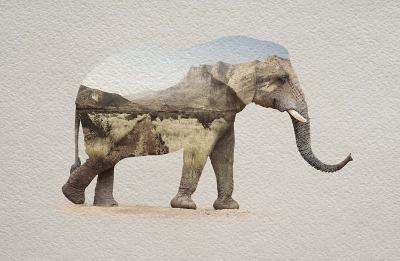 African Elephant Erongo Namibia-Color Me Happy-Art Print