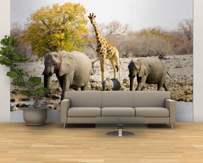 African Elephants and Giraffe at Watering Hole, Namibia-Joe Restuccia III-Wall Mural – Large