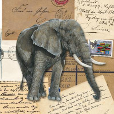 African Elephants--Art Print