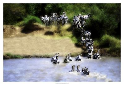 African Plains IX-Golie Miamee-Art Print