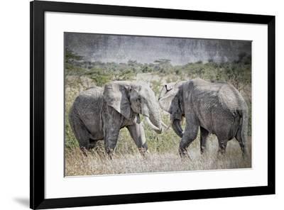 African Plains XI-Golie Miamee-Framed Art Print