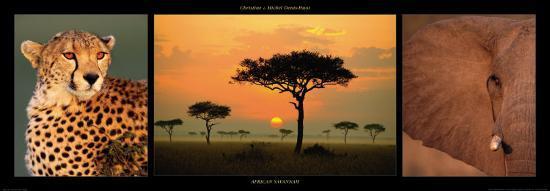 African Savannah-Michel & Christine Denis-Huot-Art Print