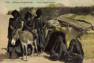 Afrique Occidentale, Campement Maure, Mauren, Volkstypen, Frauen, Esel--Giclee Print