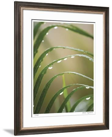 After the Rain II-Joy Doherty-Framed Giclee Print