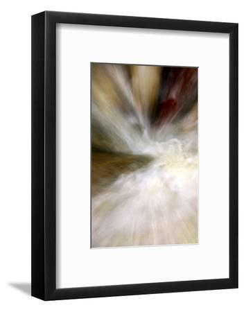 After the Rain II-Douglas Taylor-Framed Photographic Print
