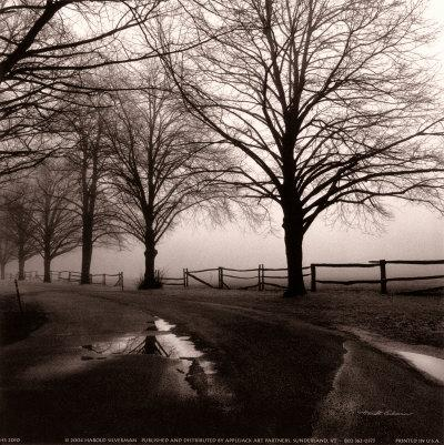 https://imgc.artprintimages.com/img/print/after-the-rain_u-l-envrj0.jpg?p=0