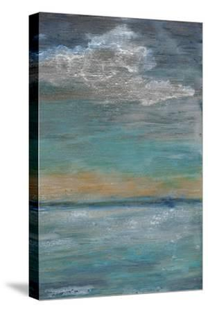 After the Storm II-Alicia Ludwig-Stretched Canvas Print