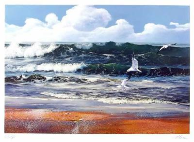 After the storm-Uwe Werner-Collectable Print