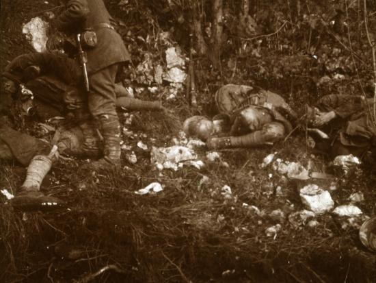Aftermath of battle, c1914-c1918-Unknown-Photographic Print