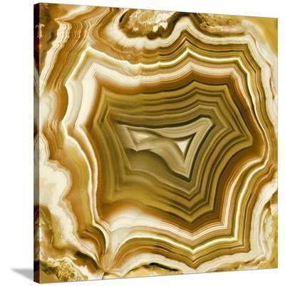 Agate in Amber-Danielle Carson-Stretched Canvas Print