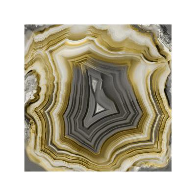 Agate in Gold & Grey-Danielle Carson-Giclee Print