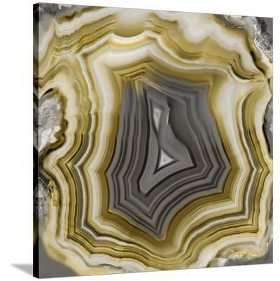 Agate in Gold & Grey-Danielle Carson-Stretched Canvas Print