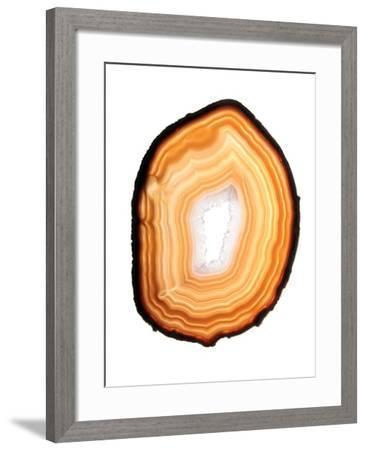 framed agate slices.htm agate slice  photographic print gavin kingcome art com  agate slice  photographic print gavin