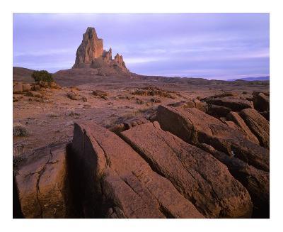 Agathla Peak, the basalt core of an extinct volcano, Monument Valley, Arizona-Tim Fitzharris-Art Print