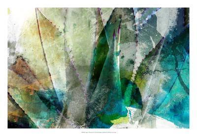 https://imgc.artprintimages.com/img/print/agave-abstract-ii_u-l-f8swng0.jpg?p=0