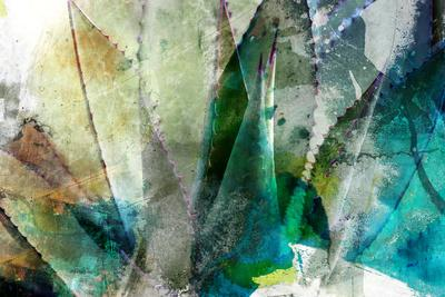 https://imgc.artprintimages.com/img/print/agave-abstract-ii_u-l-q19bmy40.jpg?p=0