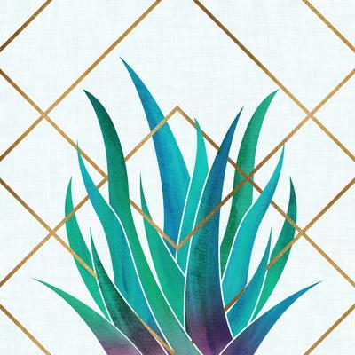 https://imgc.artprintimages.com/img/print/agave-with-geometrics_u-l-f9i6sh0.jpg?p=0