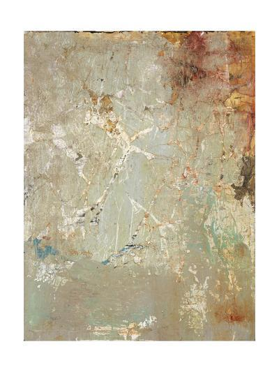Aged Wall IV-Alexys Henry-Giclee Print