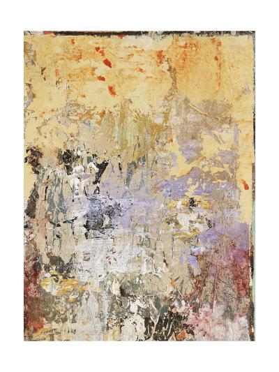 Aged Wall VI-Alexys Henry-Giclee Print