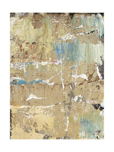 Aged Wall VIII-Alexys Henry-Giclee Print