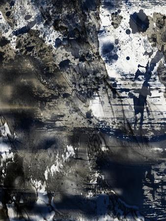 https://imgc.artprintimages.com/img/print/ageless-ultramarine-2_u-l-q1bqph70.jpg?p=0