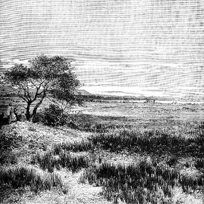 Agha Valley, Central Pampa, Argentina, 1895--Giclee Print