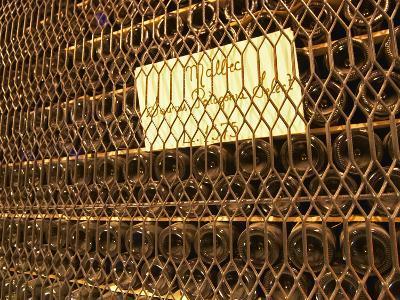 Aging Bottles of Malbec, Bodega Familia Schroeder Winery, Neuquen, Patagonia, Argentina-Per Karlsson-Photographic Print