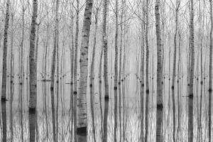 Novembre 2014 by Aglioni Simone