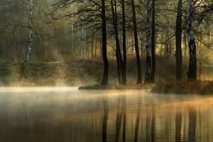 Silent Light. by Agnieszka Jankowska