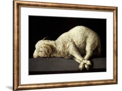 Agnus Dei (The Lamb of God), 1635-1640-Francisco de Zurbaran-Framed Giclee Print