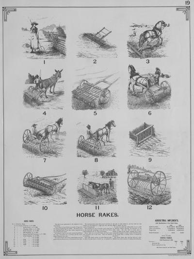 Agricultural Implements - Horse Rakes--Giclee Print