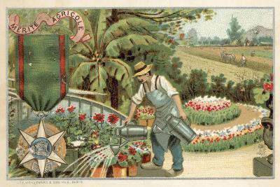 Agricultural Merit Medal--Giclee Print