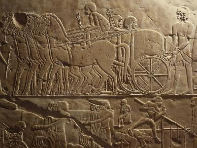 Agricultural Produce Being Transported to Granaries, Relief, Tomb of Khaemhat, known as Mahu--Giclee Print