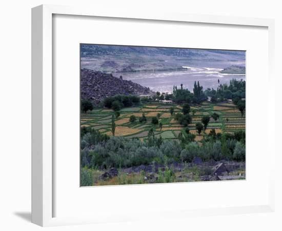Agriculture Fields, Indus Valley, Pakistan-Gavriel Jecan-Framed Photographic Print