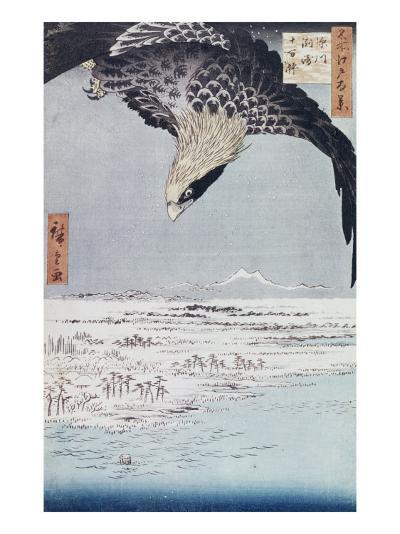 Aigle au-dessus des champs de Susaki à Fukagawa-Ando Hiroshige-Giclee Print