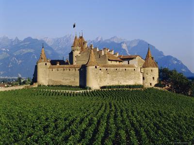 Aigle Chateau and Vineyard, Near Lac Leman, Switzerland-Adina Tovy-Photographic Print